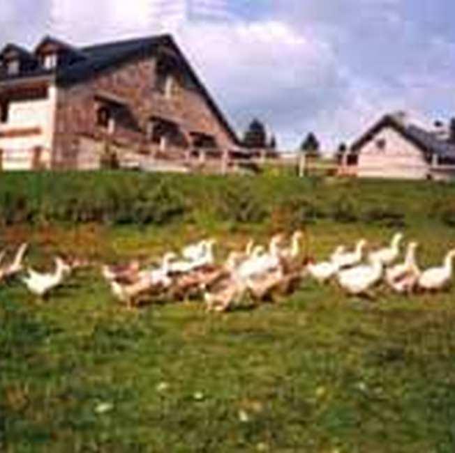 Chambre d'hote Jura - Les environs