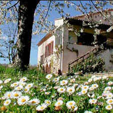 Bed & breakfasts Alpes de Haute Provence, from 59 €/Nuit. Forcalquier (04300 Alpes de Haute Provence), Charm, Guest Table, Swimming Pool, Sauna, Park, 3 Single Bed(s), 2 Suite(s), 15 Maximum People, Lounge, Library, Chimeney, Gites De Fr...
