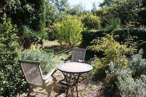 bed & breakfast Vaucluse - garden