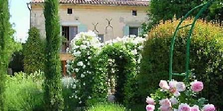Mas du caroubier Un mas ancien en Provence