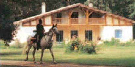 Centre Equestre Le Volcelest
