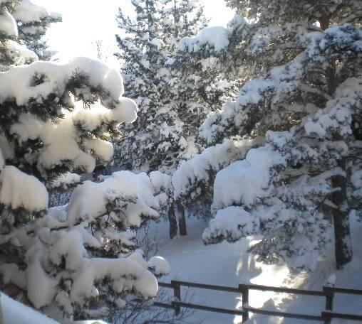 Chambre d'hote Pyrénées-Orientales - jardin en hivers