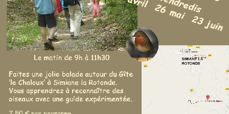 Gite de Chaloux Bird-watching