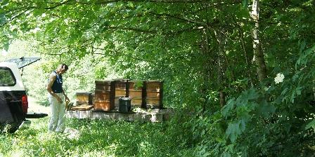 Chambre d'hôtes Ramonchamp Nous vous servons le miel de nos abeilles