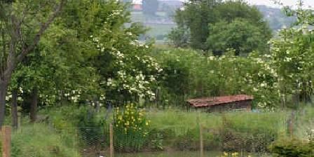 Les 2 pépinières Vue sur la campagne pévèloise, de notre jardin...