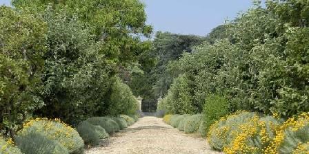 Château de Craon L'allée principale du jardin potager