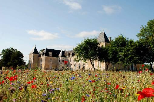 Chambre d'hote Charente-Maritime - Jachère à Panloy