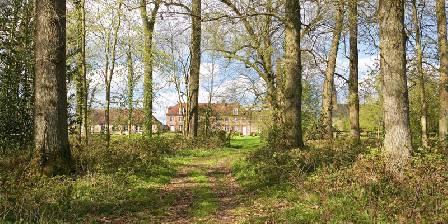 L'Orangerie du bois Vue du bois