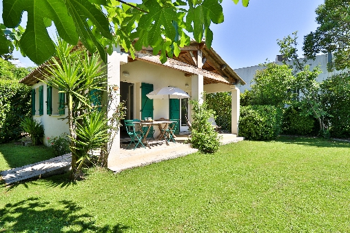 bed & breakfast Alpes Maritimes - the garden