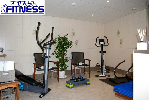 bed & breakfast Haut-Rhin - Fitness room