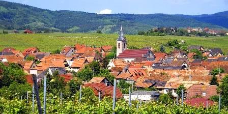 Clos des Raisins Beblenheim vue du vignoble