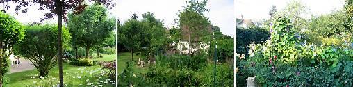 Chambre d'hote Yonne - jardin