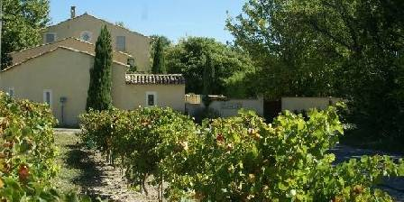Bed and breakfast Coté Provence > From the vineyard