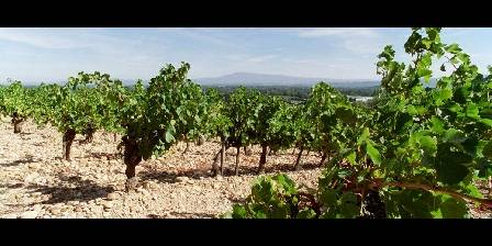 Les Vignobles qui nous entourent