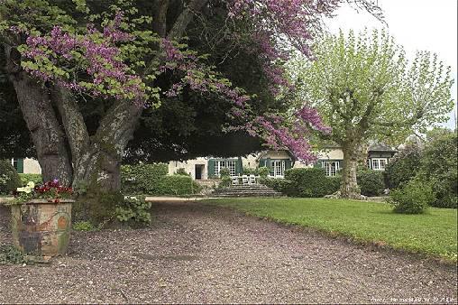 Chambre d'hote Loir-et-Cher - parc