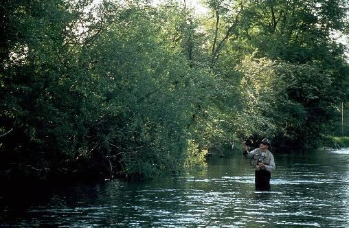 Chambre d'hote Haute-Marne - La pêche en Haute Marne