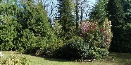 Domaine du Lampy-neuf L'arboretum