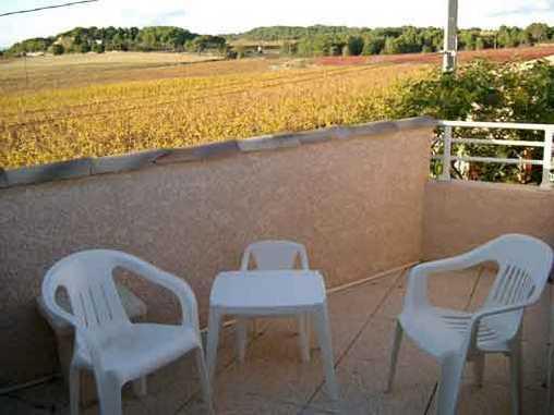 Terrasse de la chambre Aphyllante