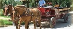 Ferienwohnung Ferme Equestre Malafretaz