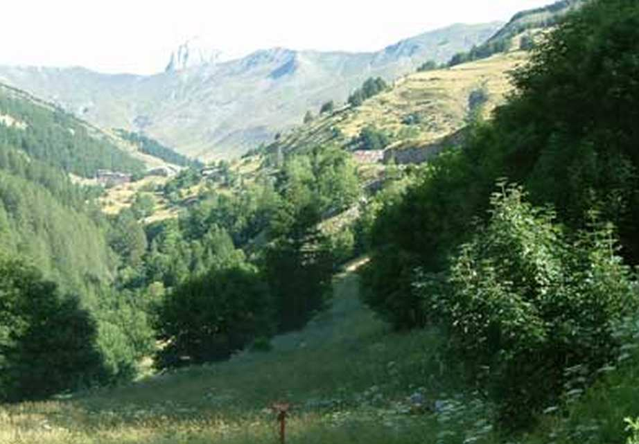 La ferme une chambre d 39 hotes dans les alpes de haute for Chambre d agriculture hautes alpes