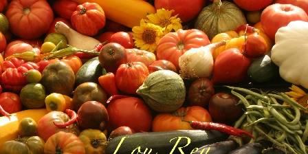 Chambre et table d'hôtes Lou-Rey Les légumes du Rey