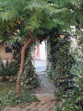 Chambres d'hotes Alpes de Haute Provence, Saint Etienne les Orgues (04230 Alpes de Haute Provence)....