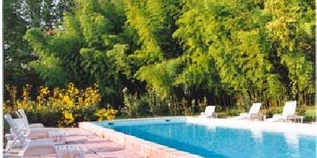 Château de Grézan La Piscine avec bosquets de Bambous