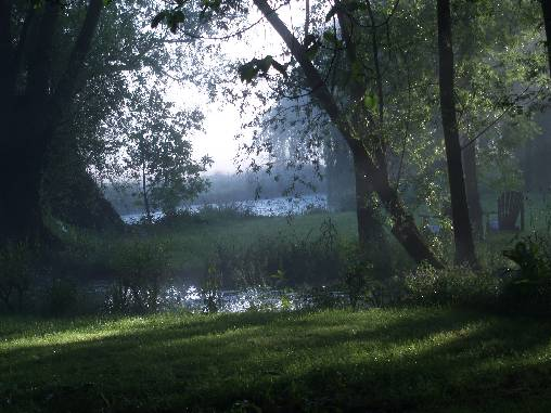 brume sur le parc