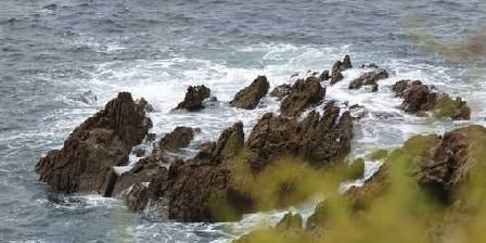 Le Nid d'Iroise Paysage sauvage en bord de mer
