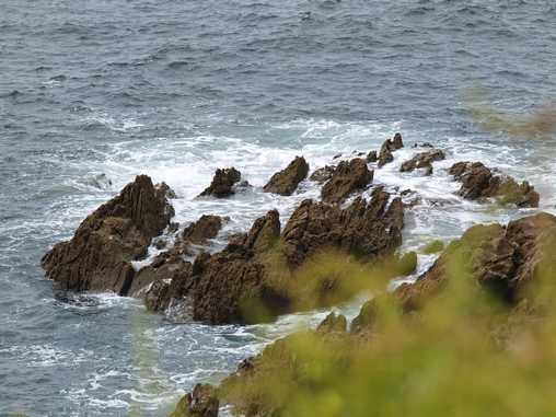 paysage sauvage en bord de mer