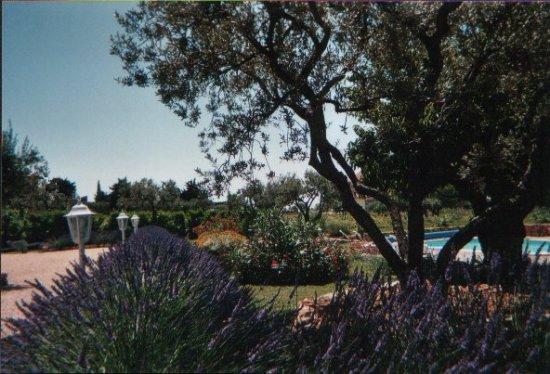Terre de vigne aups chambres d 39 hotes var chambre d 39 hote - Chambre d hote de charme provence alpes cote d azur ...