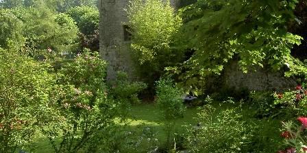 L'ile aux Peintres La tour