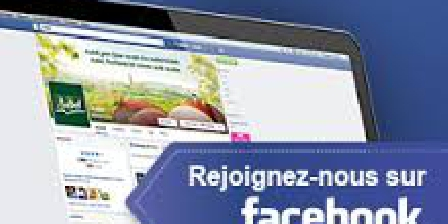 Les Volets Bleus Vosges Suivez nous sur Facebook Les Volets BLEUS
