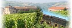 Gästezimmer Domaine des Vignes d'Hôtes