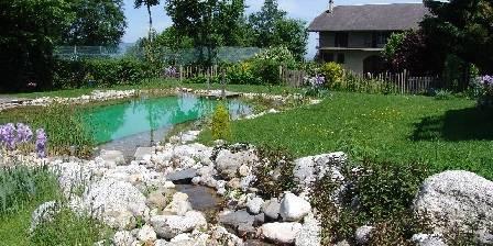 Gîte La Jument Verte La piscine naturelle