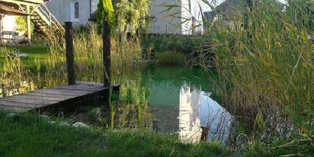 Gîte La Jument Verte La piscine naturelle en été