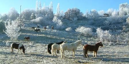 Les Eco-Logis d'Ensarnaut été, hiver, l'équitation buissonnière