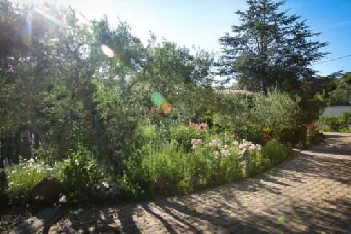 bed & breakfast Gard - Garden vue