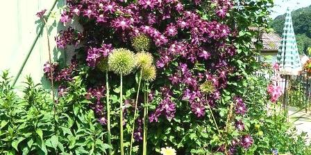 Au Jardin Fleuri Jardin