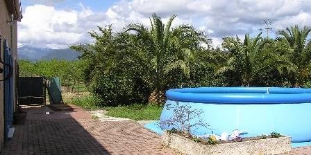 Les Palmiers Piscine