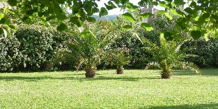 L'escale Provençale Garden with palms