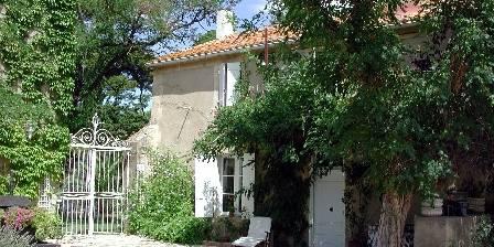 Château Ricardelle - Gîtes
