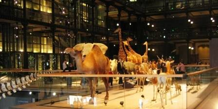 Musum National d'Histoire Naturelle