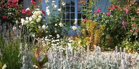 Le jardin sauvage Terrasse fleurie