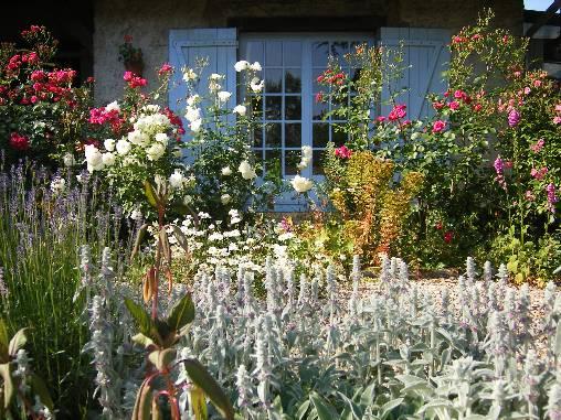 Chambre d'hote Pas-de-Calais - Terrasse fleurie