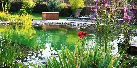La Jument Verte Chambres d'hôtes La piscine naturelle