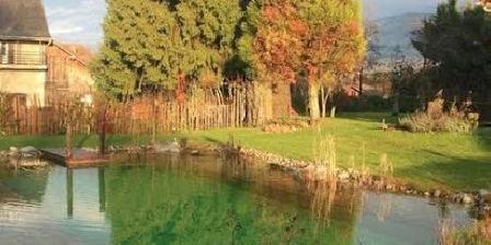 La Jument Verte Chambres d'hôtes La piscine naturelle en été