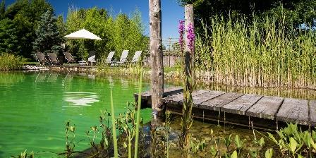 La Jument Verte Chambres d'hôtes Dépaysement garanti avec LA piscine naturelle