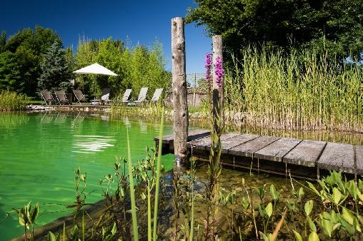 Dépaysement garanti avec LA piscine naturelle