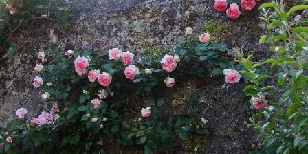 Demeure l'impériale Le jardin